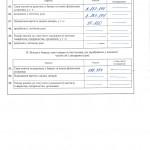 declaration 2011 new_Страница_08